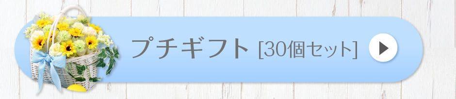 プチギフト[30個セット]